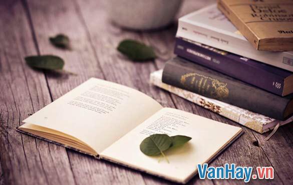 Văn học chân chính có khả năng nhân đạo hoá con người