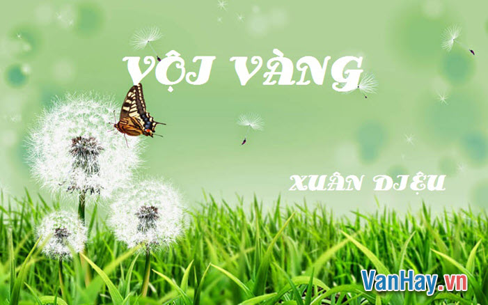 voi-vang-xua-dieu
