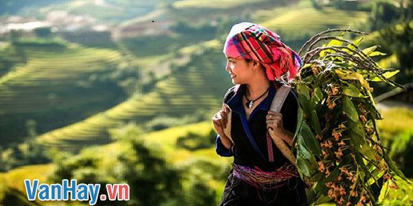 ta với mình trong bài thơ Việt Bắc