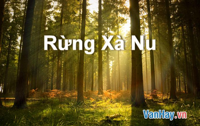 Hình tượng cây xà nu trong truyện ngắn Rừng xà nu của Nguyễn Trung Thành