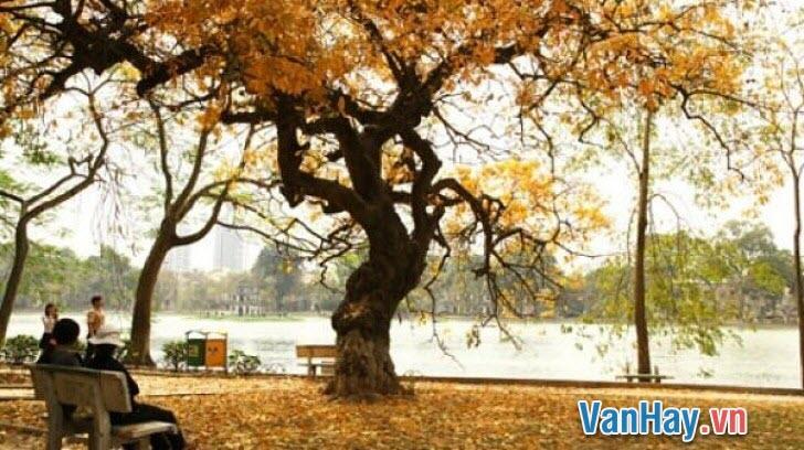 Hai trạng thái cảm xúc của thi nhân qua hai bài thơ Đây mùa thu tới của Xuân Diệu và Đất nước của Nguyên Đình Thi