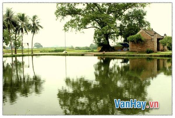 Phân tích: Quê hương làng cảnh Việt Nam trong ba bài thơ thu của Nguyễn Khuyến