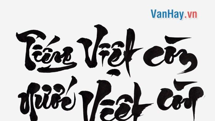 Phân tích những giá trị và hạn chế trong bài viết Tiếng mẹ đẻ - nguồn giải phóng các dân tộc bị áp bức của Nguyễn An Ninh